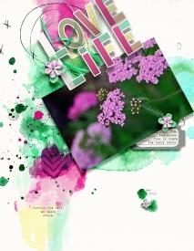 LoveLife7.jpg