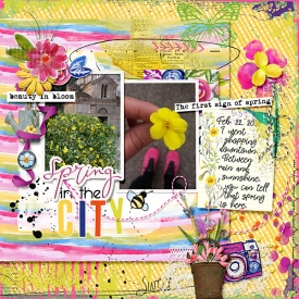 folder18.jpg