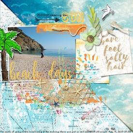 lbw_SBasic_Beachscape.jpg