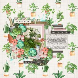 Office_Plants.jpg