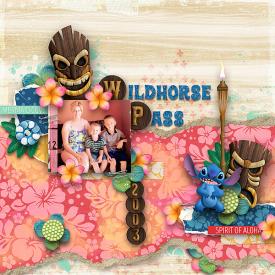 Wildhorse-PassWEB.jpg