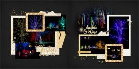 web_2018_December30_Longwood_treelights_SwL_SimpleandSweetLifeTemplate12_14.jpg