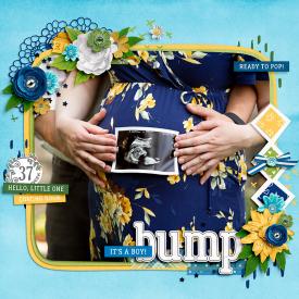 Bump1.jpg