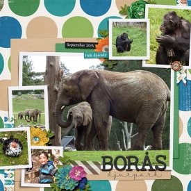 boras-zoo-Hanna.jpg