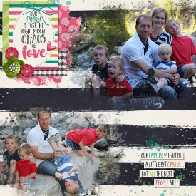 Our-crazy-family_copy.jpg