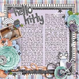 2007_GrumpyKitty_WEB.jpg