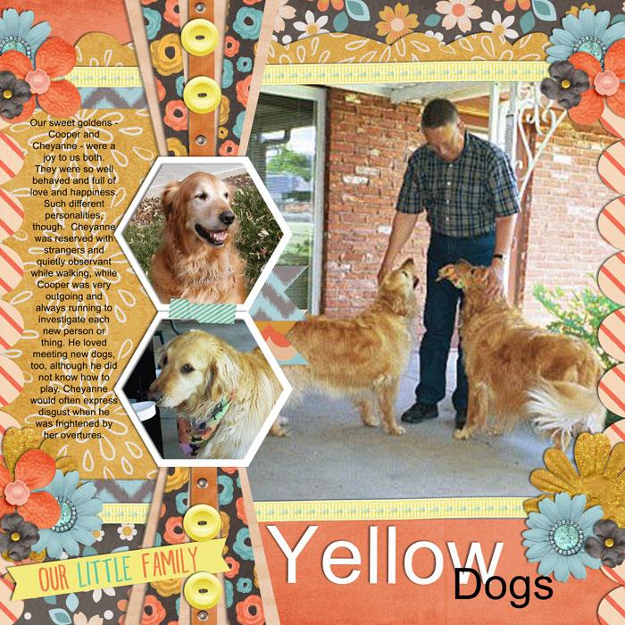 G11-yellowdogs