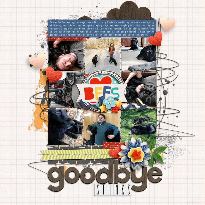 Goodbye-Stinks