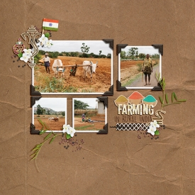 07-2018-India-Farming-web.jpg