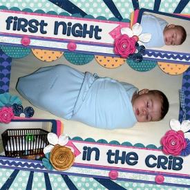 11-8-6-first-night-in-the-crib.jpg
