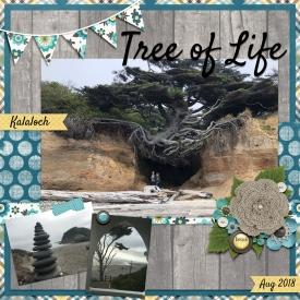 2018-08-Kalaloch-Tree-of-Life-WEB.jpg