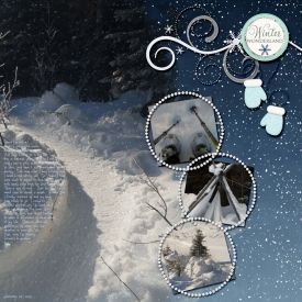 A-0201-Snowshoeing.jpg