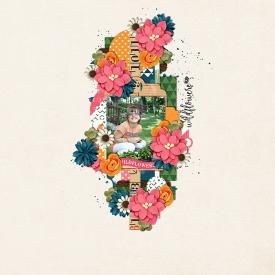 Like_Wildflowers.jpg