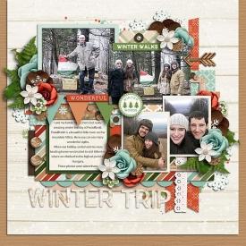 Wintertrip.jpg