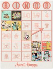 bingo-july-challenges_copy.jpg