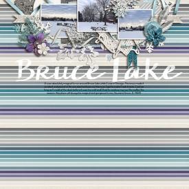 jan15--bruce-lake.jpg