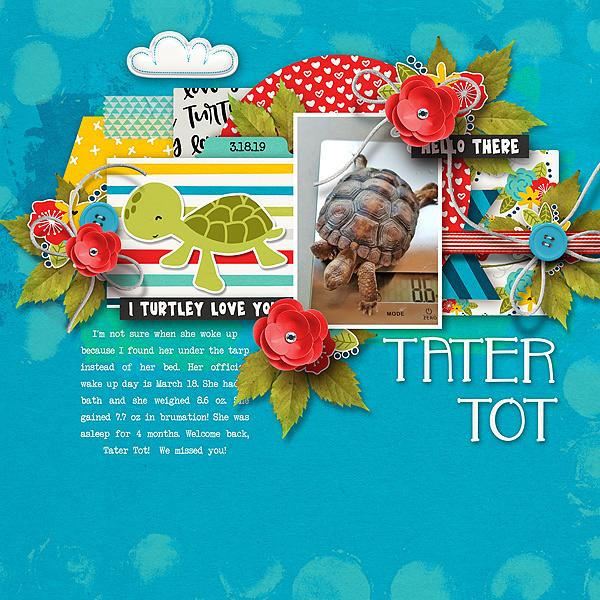 Tater-Tot-is-AwakeWEB