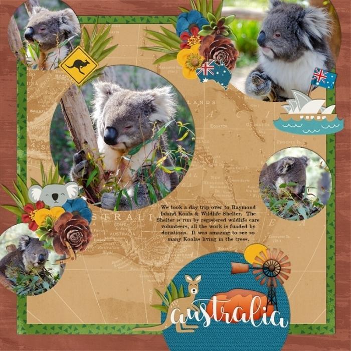 Koala_Park