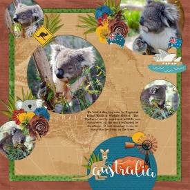 Koala_Park.jpg