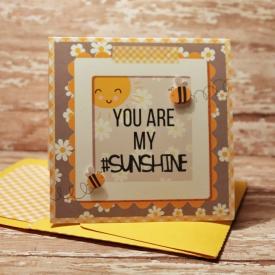 Sunshine_AY_SSD.jpg