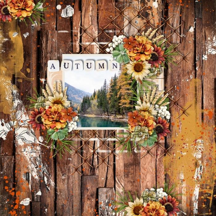 Autumn_view