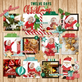 DSI-twelve-days-of-Christmas.jpg