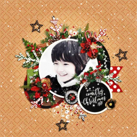 DSI_christmashappiness-Country_Charm-1.jpg