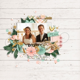 bm-dsi-mm_WeddingDay-layout-me.jpg