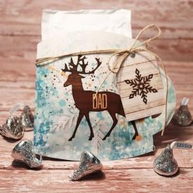 winterdays_dsi_ssd_mug_gift.jpg