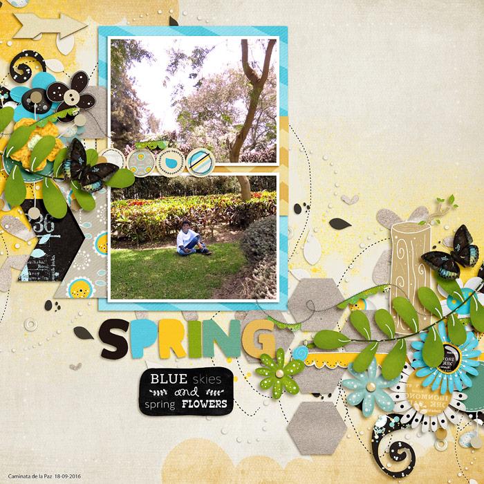 blueskiesspringflowersri1-700