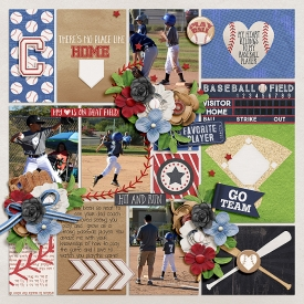 Baseball_SSD_mrsashbaugh.jpg