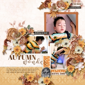 NTTD_Long_1688_WendyP_Autumn-rose_Meagan_Temp_HSA-copper-spice_700.jpg