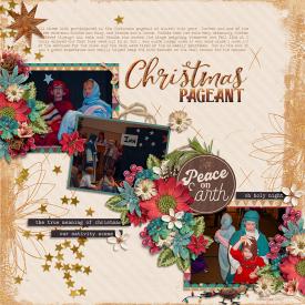 Robin_Canyon-Christmas-SSD.jpg