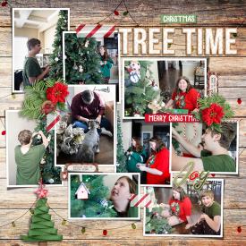 Robin_Gnome-for-Christmas-SSD.jpg