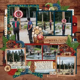 Robin_Lumberjack-SSD.jpg