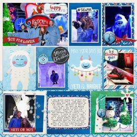 Robin_Yeti-Christmas-SSD.jpg