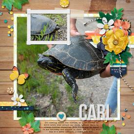 carl-web.jpg