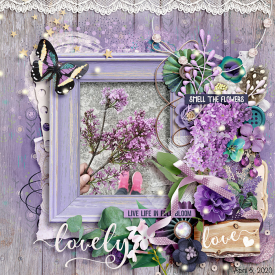 wendyp-lilac-cottage.jpg