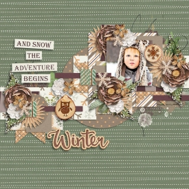winterwoodland-77.jpg