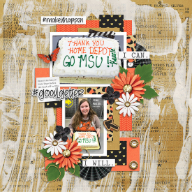 Robin_Boss-Lady-SSD.jpg