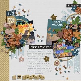 Robin_Puzzle-Night-700.jpg