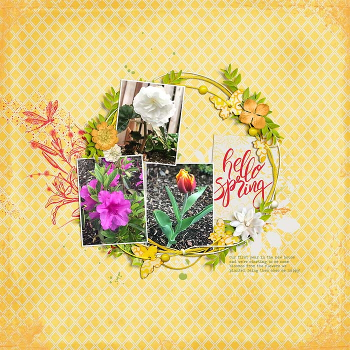 30-hello-spring-0405rr