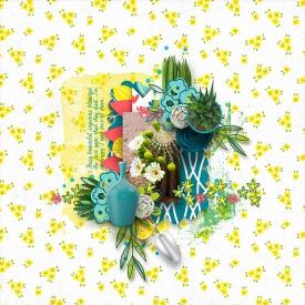 Saguaro-bloomWEB.jpg