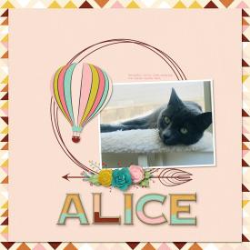 17-alice-0612kb.jpg