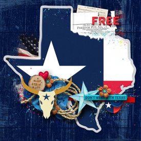 Texas-patrioticWeb.jpg