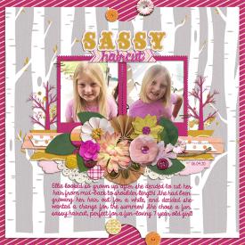 sassyhair_web.png