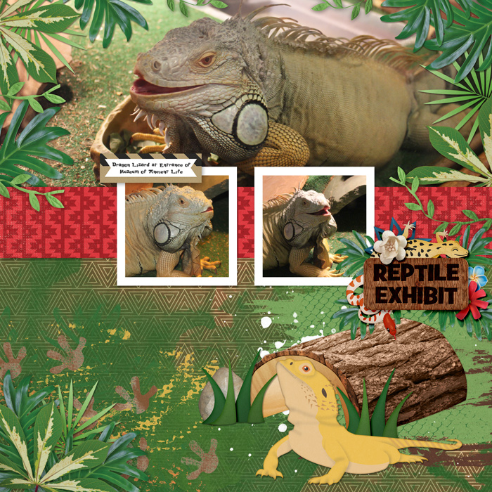 Dragon-Lizard-HSA-memory-keeper-2-B