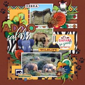 Addo-Safari-700-393.jpg