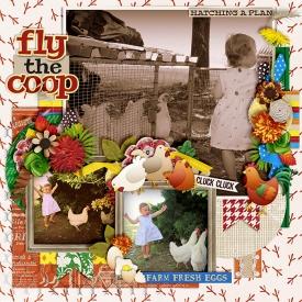 Fly-the-coop-700-380.jpg