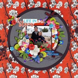 Life-in-Bloom-700-392.jpg